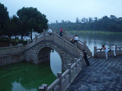 明けきらない運河畔で朝の運動をする市民