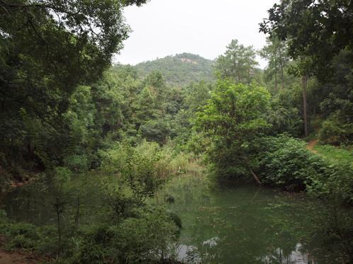 池の向こうに天平山