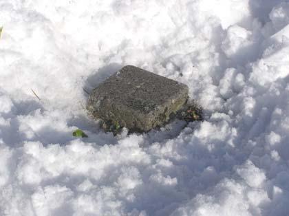 雪の中から顔を出した三角点