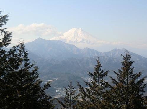 富士見台から富士山を望む